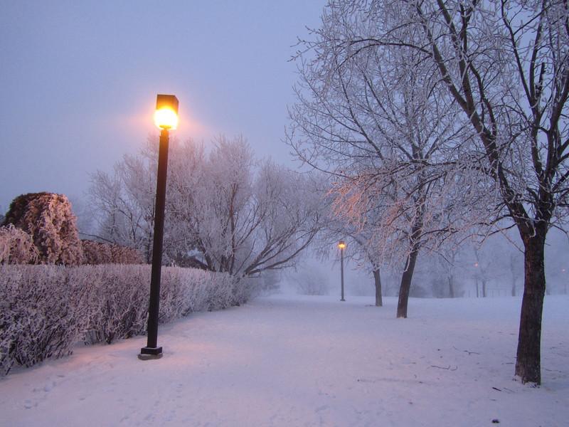 Lamp Light in Fog