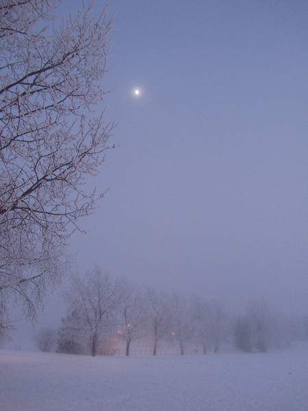 Moonlight Shining Through Fog