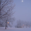 Moonlight on Frost
