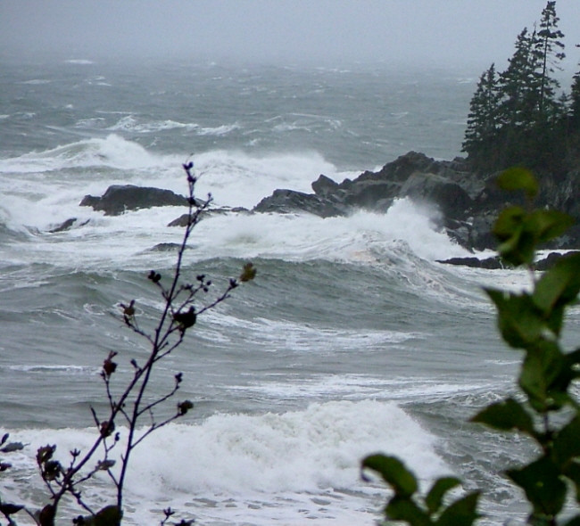 10/25/2005  <br /> <br /> Storm and waves on the western side of Campobello