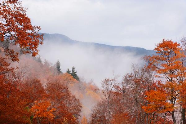 Beautiful foggy fall mountain landscape.