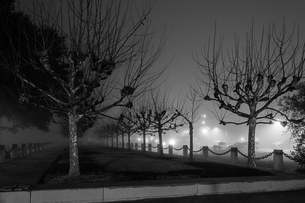 A Foggy Night in Charleston 2017-13