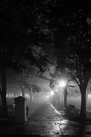 A Foggy Night in Charleston 2017-14