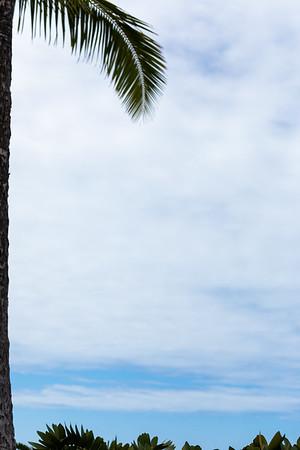 Travel_Hawaii_03032020_0306
