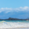 Travel_Hawaii_03052020_0225