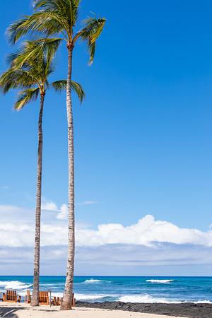 Travel_Hawaii_03062020_0187