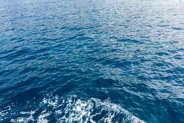 Travel_Hawaii_03072020_0148