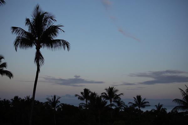 Travel_Hawaii_032020_0057