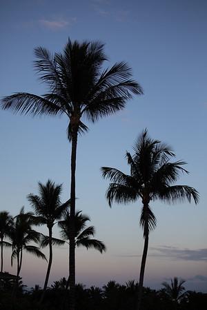 Travel_Hawaii_032020_0061