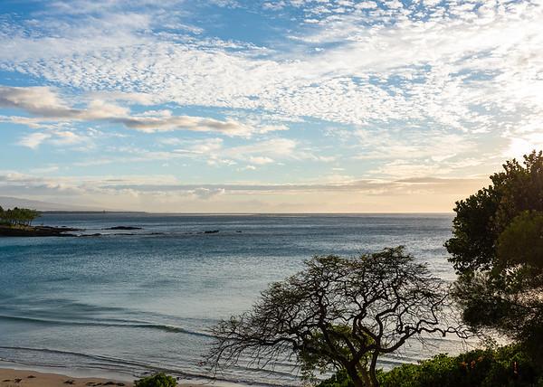 Travel_Hawaii_03072020_0684