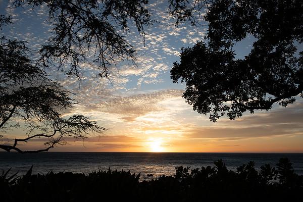 Travel_Hawaii_03072020_0043