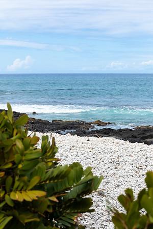 Travel_Hawaii_03032020_0305
