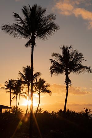 Travel_Hawaii_03052020_0003
