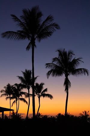 Travel_Hawaii_032020_0014