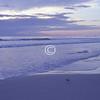 Dawn, Daytona Beach, Florida