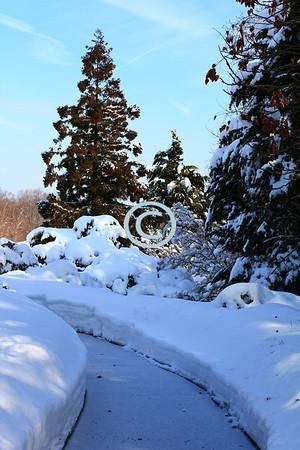 Snowy landscape, Deep Cut Park, New Jersey