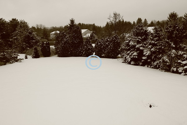 Snow-covered landscape, Middletown, New Jersey