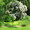 The Garden State<br /> <br /> New Jersey's scenery -<br /> Breath-giving greenery!<br /> - Kulbir