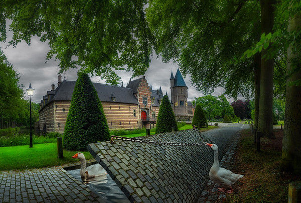 Life's a Fairytale Life is a Fairy Tale | Family of Geese Goose and Gosling Creating and Dreaming Their Own World in Front of the Beautiful Medieval Castle of Heeswijk in the Netherlands Nederlands Kasteel Trouwlocatie Fotograaf Trouwen Trouwfotograaf