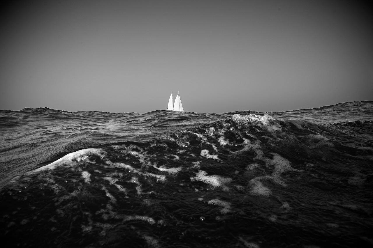 TARA OCEANS EXPEDITION - GOLFE DE GASCOGNE - ATLANTIQUE