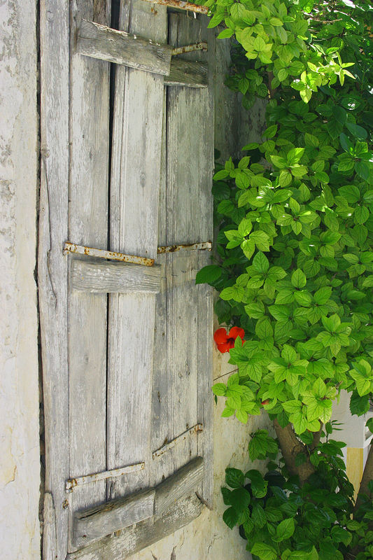 Window in Samos, Greece