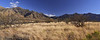 Grasslands and the Santa Anita Mountains by Madera Canyon,  AZ: March 8, 2014