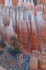 Hoodoos of Bryce Canyon, Utah (March 23, 2013)