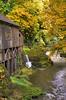 Cedar Creek Grist Mill near Woodland, WA (October 30, 2012)