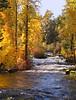 Trout Lake Creek near the town of Trout Lake, WA (10-26-2014)