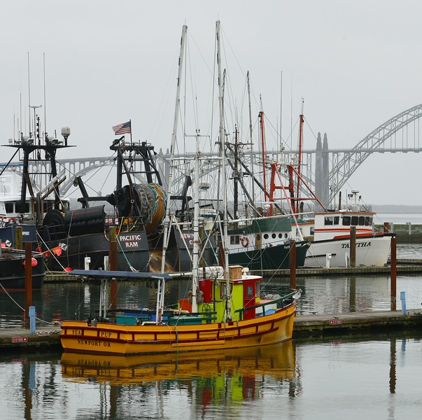 The Sea Pup; Marina and bridge in Newport, OR (6-16-15)