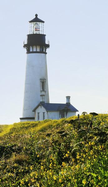 Yaquina Head Lighthouse, OR (6-21-14)
