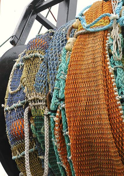 Fishing Net: Newport, OR (6-16-15)