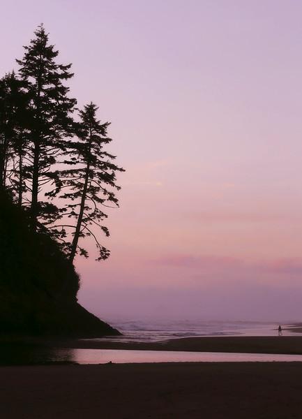 Proposal Rock Beach