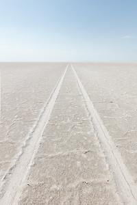 Salt Tracks