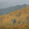 Layers and the First Fall Snow