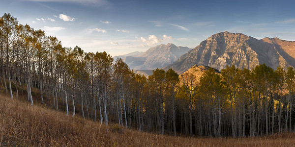Golden Afternoon in the Southern Wasatch Pano 1x2