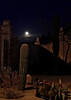 Moonlight over the garden of Mission San Xavier del Bac (2-11)