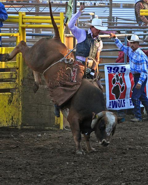 Bull Riding, Clark County Fair: August 2010