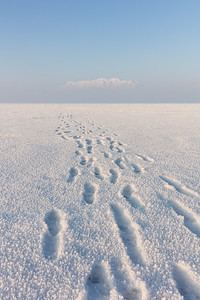 Frozen Footprints and the Mountain in the Sky