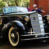 Forest Grove Concours d'Elegance