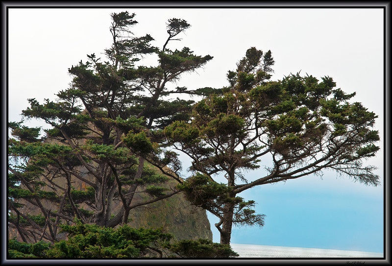 Haystack Rock, Cannon Beach, Oregon. 2-07-2012