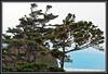 Haystack Rock, Cannon Beach, Oregon. 2-07-2012