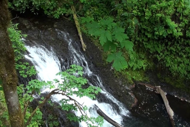 Drake Falls, 27 ft.<br /> <br /> To Play Video _____CLICK ON PHOTO_____ !
