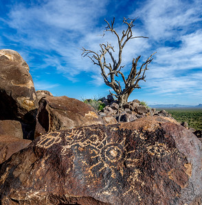 Ironwood Forest N.M. Petroglyphs #4