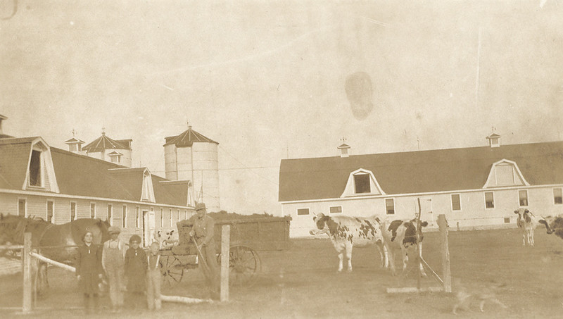 A Belgian dairy farm in Fort Garry, Canada