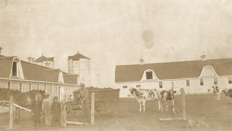 A Belgian dairy farm in Fort Garry, Canada