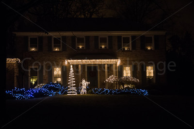 White and Blue Christmas Lights