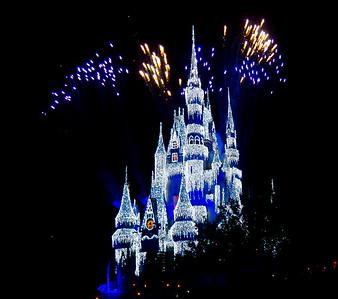 Family at Disney 2014