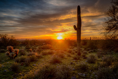 Arizona Sunset - Featured in the Royal Dispatch Magazine