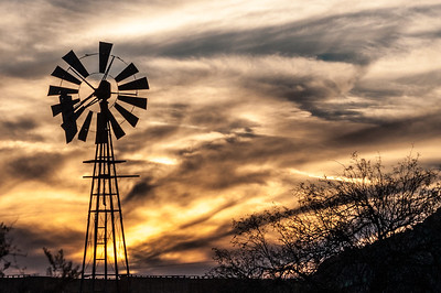 Golden Windmill
